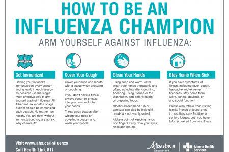 Hi Dis Flu Prevention Poster