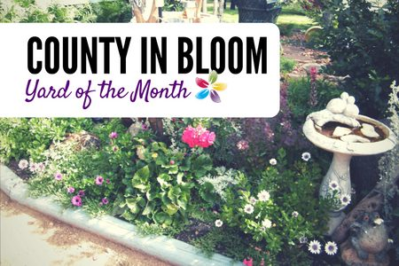 Yard Of The Month News Article