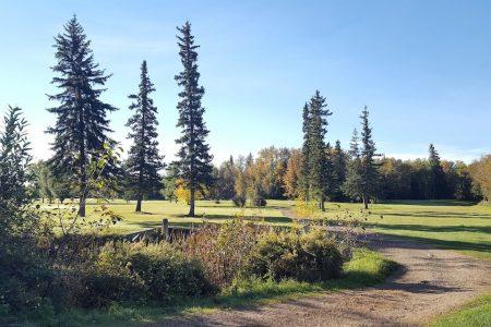 Mighty Peace Golf Club 2