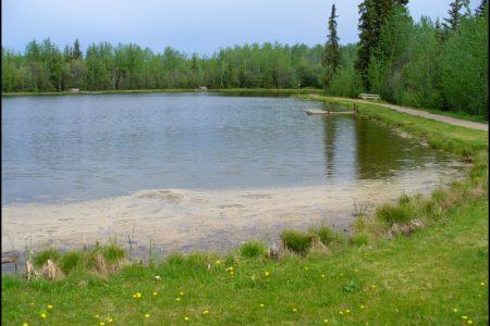 7214 Wilderness Park11