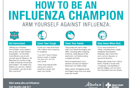 Hi Dis Flu Prevention Poster