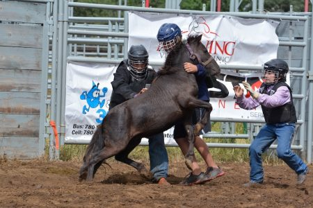 Battle River Rodeo 2