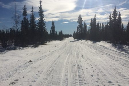 Wesley Creek 08 Mar15 Trail In Muskeg 002
